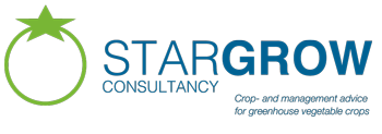 Stargrow Consultancy